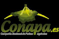 logo_web (2)